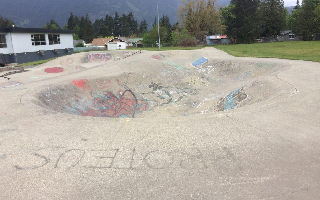 Hope skatepark snakerun bowl
